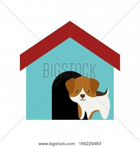 dog canine young standing colored house vector illusration eps 10