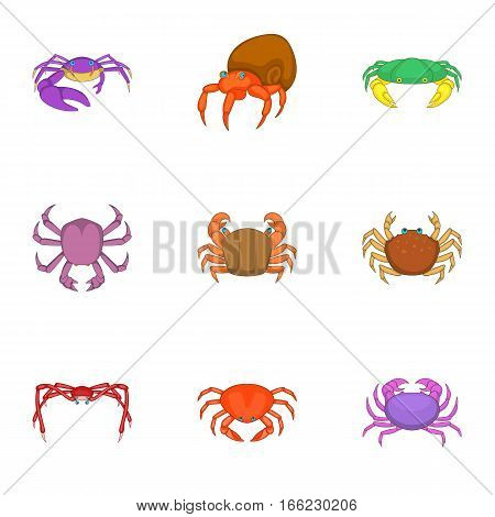 Crab sea animals icons set. Cartoon illustration of 9 crab sea animals vector icons for web