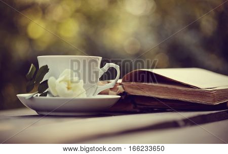 Old open books and a cup with a white wild rose on a table.