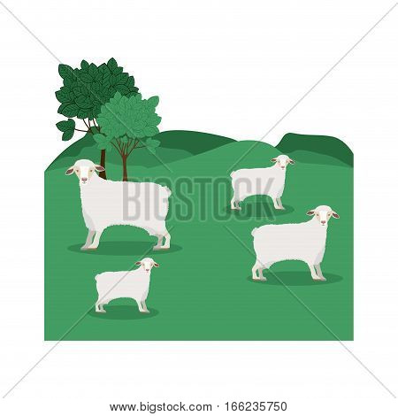 landscape with sheep and trees vector illustration