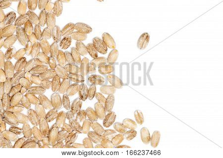 Pearl barley seeds border with empty white background