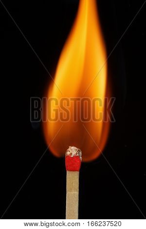 One quiet burning match on black background. Match burning details