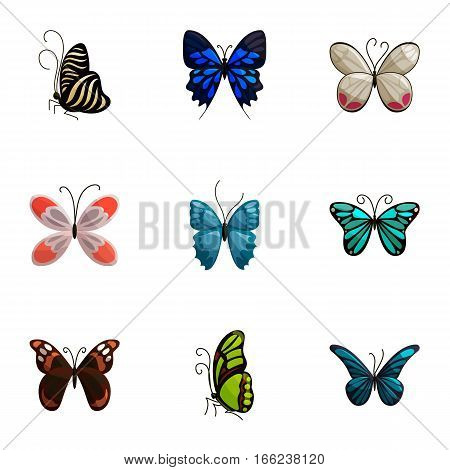 Tropical butterfly icons set. Cartoon illustration of 9 tropical butterfly vector icons for web