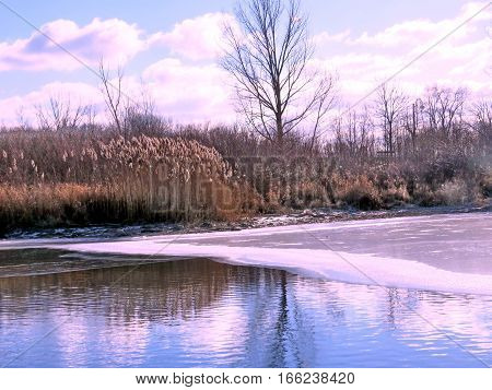 Winter landscape on a shore of the Lake Ontario in Toronto Canada January 6 2017