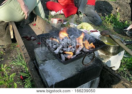 People on picnic by fire coals grass