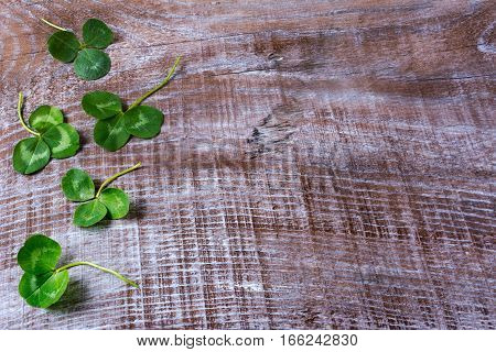 St. Patricks day greeting with clovers leaves frame on wooden background. Traditional Irish festival symbol. Copy space.