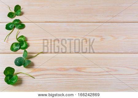 Three-leaves clover on wooden background. St. Patricks day greeting card. Shamrock Irish festival symbol. Copy space.