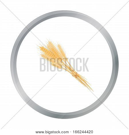 Bundle of wheat icon in cartoon style isolated on white background. Canadian Thanksgiving Day symbol vector illustration. - stock vector