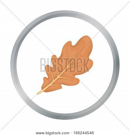 Oak leaf icon in cartoon style isolated on white background. Canadian Thanksgiving Day symbol vector illustration. - stock vector