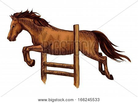 Horse racing and jump over barrier. Equine horse racing sport symbol. Arabian brown mustang jumping over fence