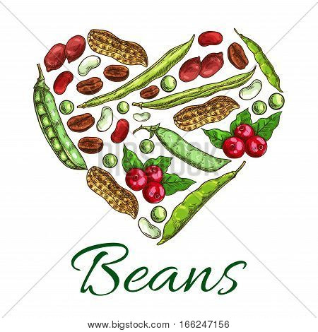 Nuts, beans and grains in shape of heart. Poster with nuts, coffee beans, peanuts in shell, beans, green peas, legume pods. Symbol design with plants seeds for vegetarian and vegan vegetable food nutrition or cuisine