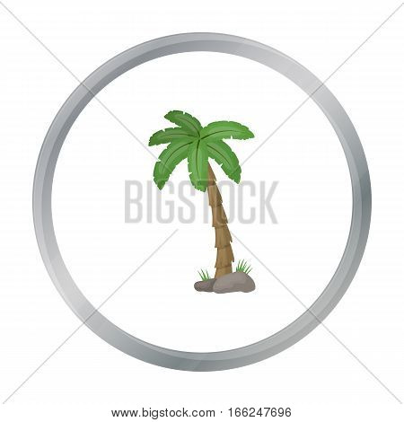 Palm tree icon in cartoon design isolated on white background. Brazil country symbol stock vector illustration. - stock vector