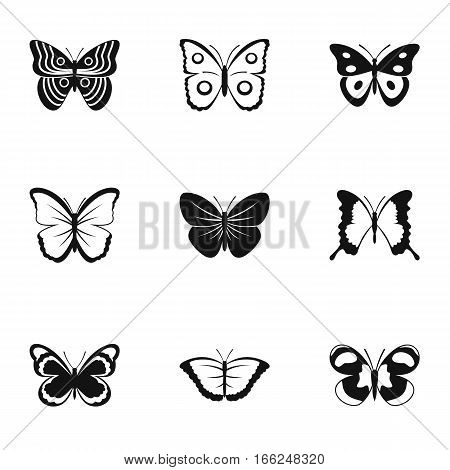 Types of butterflies icons set. Simple illustration of 9 types of butterflies vector icons for web