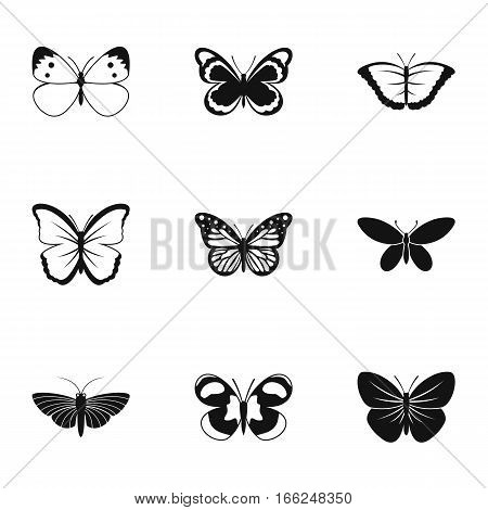 Insects butterflies icons set. Simple illustration of 9 insects butterflies vector icons for web