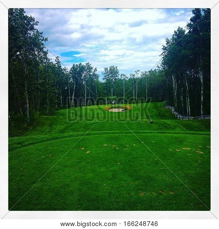 Bright and lush green grass on golf course with bunker in background. Thick tall trees along fairway. Blue sky and clouds over fairway. Instagram effects