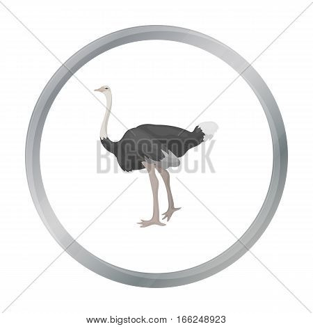 Ostrich icon in cartoon style isolated on white background. Bird symbol vector illustration. - stock vector