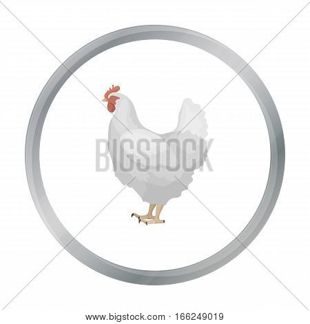Chicken icon in cartoon style isolated on white background. Bird symbol vector illustration. - stock vector