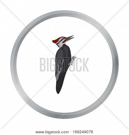Woodpecker icon in cartoon style isolated on white background. Bird symbol vector illustration. - stock vector