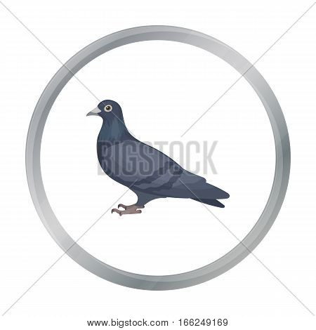 Pigeon icon in cartoon style isolated on white background. Bird symbol vector illustration. - stock vector