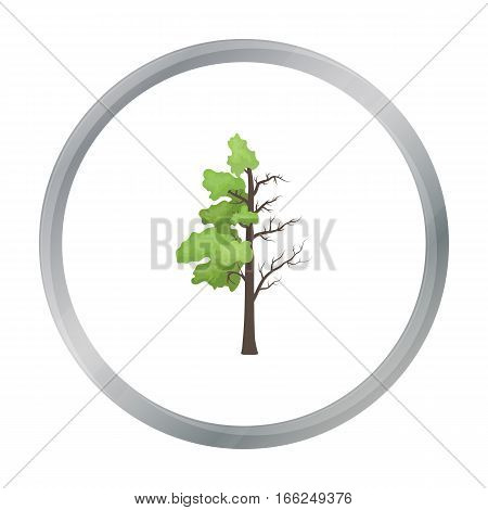 Tree half full of green leaf and half dry icon in outline design isolated on white background. Bio and ecology symbol stock vector illustration. - stock vector