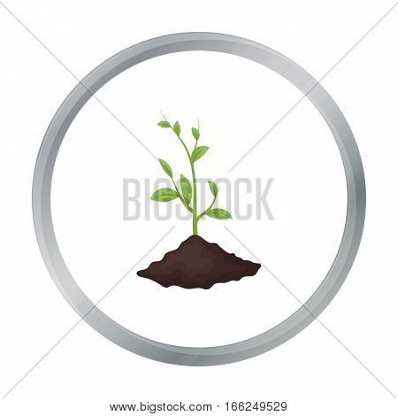 Sprout icon in outline design isolated on white background. Bio and ecology symbol stock vector illustration. - stock vector