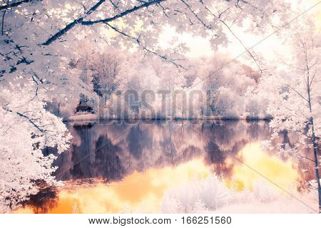 a toned infrared shot of a lake surrounded by trees.
