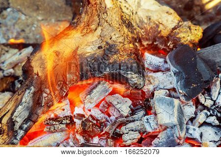 Burning firewood in the fireplace closeup glowing logs fire and flames