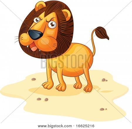 Lion roaring on a sandy area