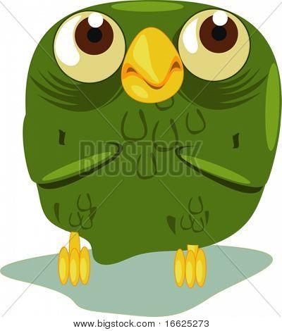 An old owl close up