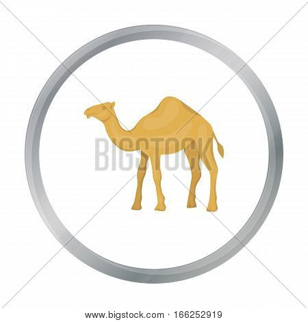 Camel icon in cartoon style isolated on white background. Arab Emirates symbol vector illustration. - stock vector