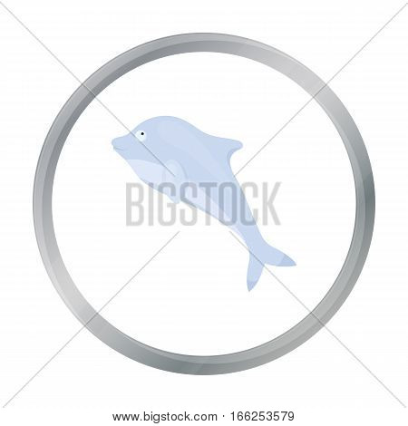Dolphin icon cartoon. Singe animal icon from the big animals cartoon. - stock vector