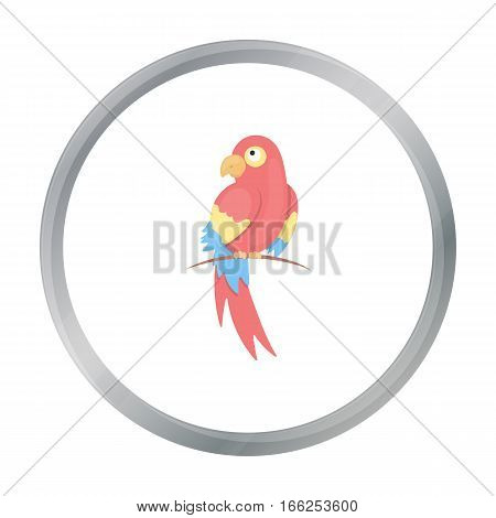 Parrot icon cartoon. Singe animal icon from the big animals cartoon. - stock vector