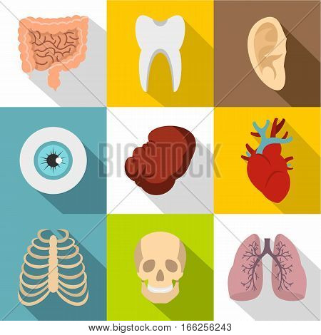 Internal organs icons set. Flat illustration of 9 internal organs vector icons for web