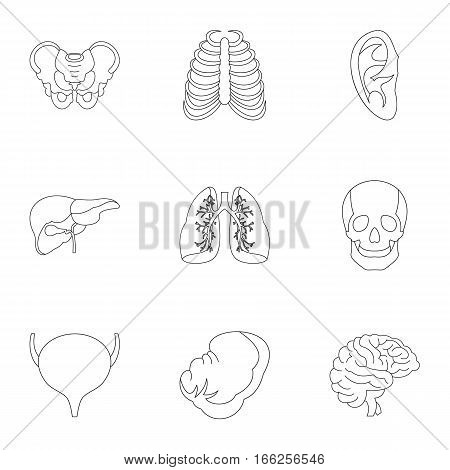 Internal organs icons set. Outline illustration of 9 internal organs vector icons for web