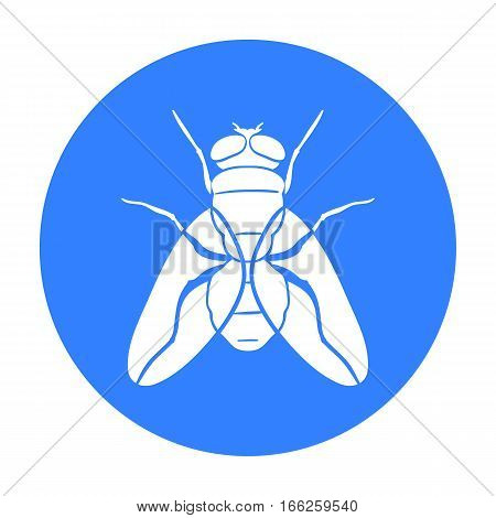 Fly icon in blue design isolated on white background. Insects symbol stock vector illustration.