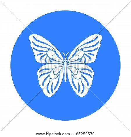 Butterfly icon in blue design isolated on white background. Insects symbol stock vector illustration.