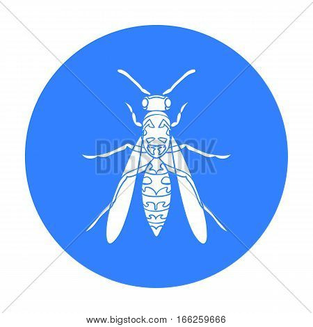 Wasp icon in blue design isolated on white background. Insects symbol stock vector illustration.
