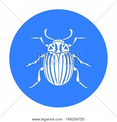 Colorado beetle icon in blue design isolated on white background. Insects symbol stock vector illustration.