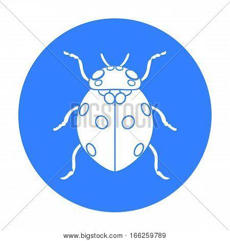 Ladybug icon isolated on white background. Insects symbol stock vector illustration.