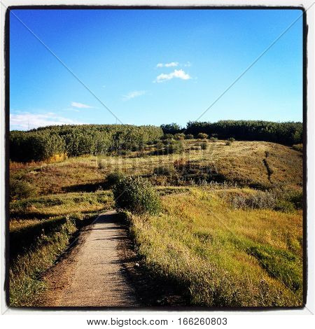 Autumn meadow landscape on sunny day with wide gravel walking trail colorful grass blue sky small white clouds forest and hills in background. Instagram effects