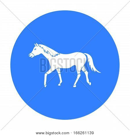 Horse icon  isolated on white background. Hippodrome and horse symbol stock vector illustration.