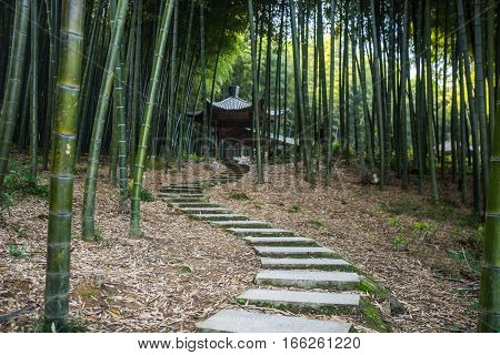 a pavilion located in Bamboo forest in Yixing city,China.