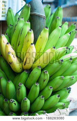 bananas in the market. banana crops, banana fruit