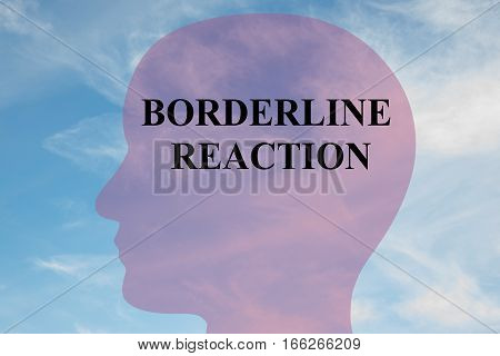 Borderline Reaction Concept