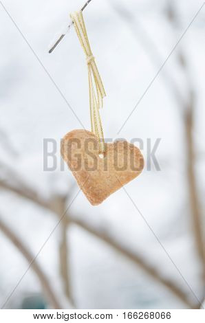 Snow covered branch decorated with Heart-shaped cookie.