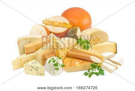 Different pieces of hard cheese semi-soft cheese and soft cheese various types and twigs of parsley on a light background