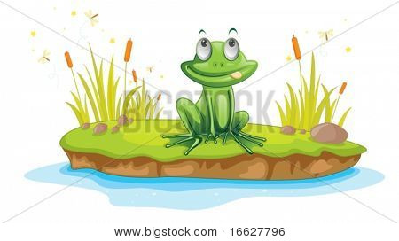 Illustration of  a cartoon frog on white