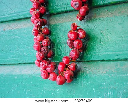 Hot peppers in tandem on a green wooden house wall