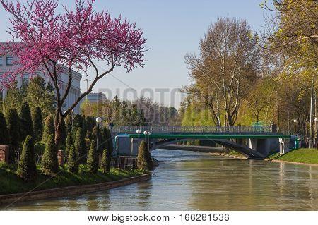 bridge over the river in the centre of the Tashkent Uzbekistan. Spring in Tashkent 2016 poster