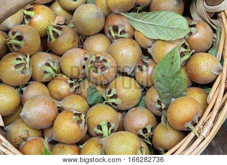 Organic Ripe Loquats In A Basket